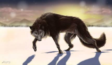 Sunset Wolf by SmileyKT
