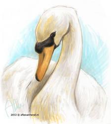 Swan by afke11