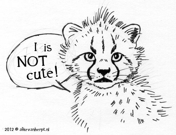 I is NOT cute! by afke11