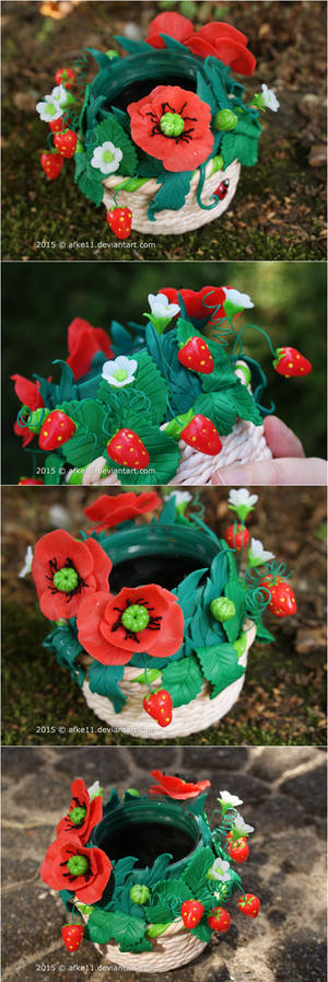 Poppies and Strawberries
