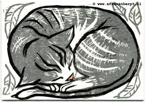 Sleeping kitty print
