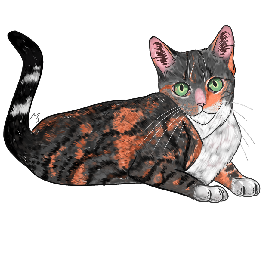 Cat commission by Mespehria