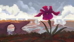 Giant Iris Flower