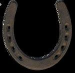 WEATHERED AND WORN HORSESHOE