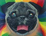 Psychedelic Pug