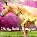 Cherryfield Meadows Avi HEE