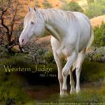 Western Judge