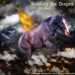 Breaking-the-Dragon-HEE
