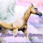 Equine Angel Estates|HEE