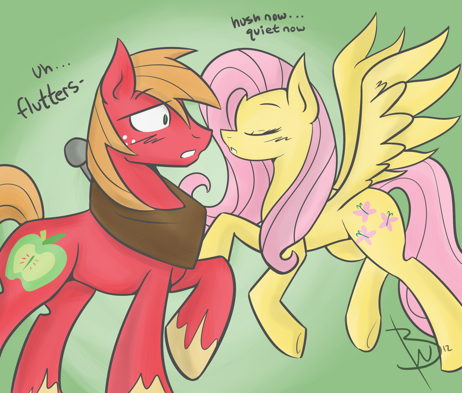 MLP Shipping is Magic Fluttershy and Big Macintosh by BlacksWhites