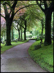 The Long and Winding Path