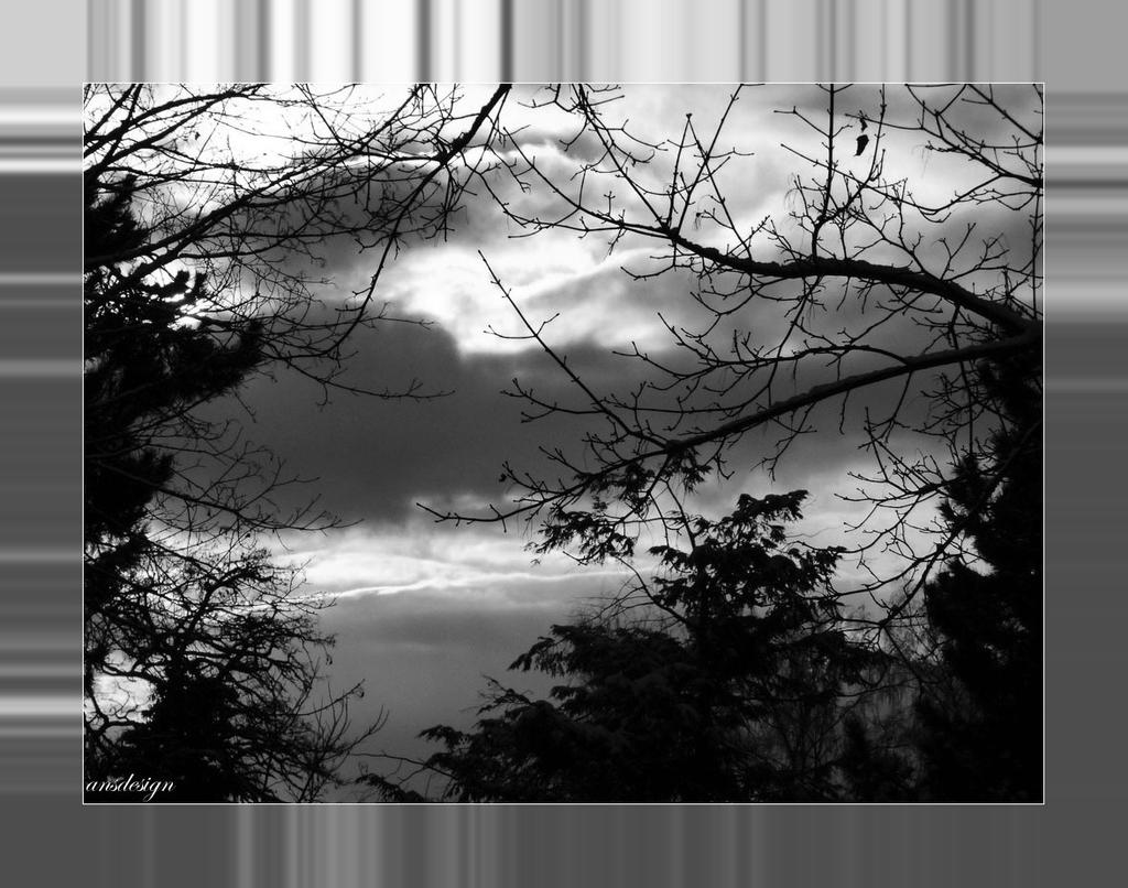 The world in black and white... by ansdesign