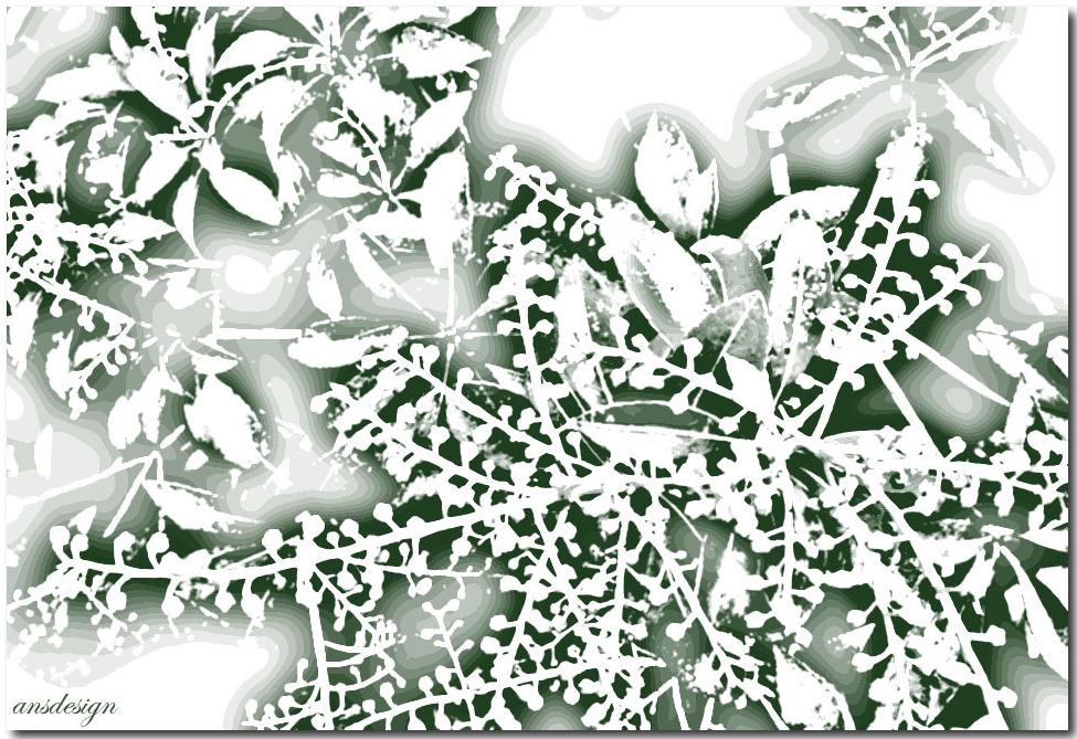 Happy Birthday dear Christo... by ansdesign