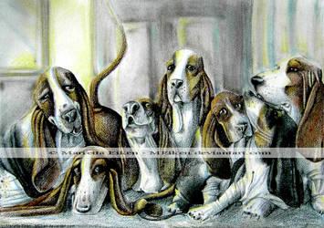 Seven Basset Hounds by meiken