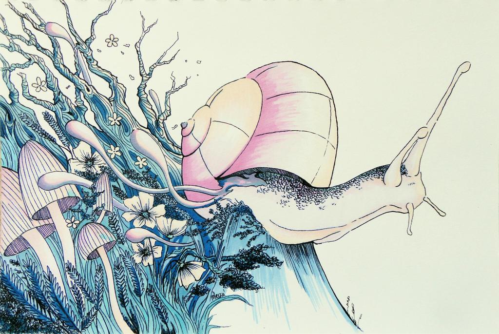 Snail by FirebladeMe