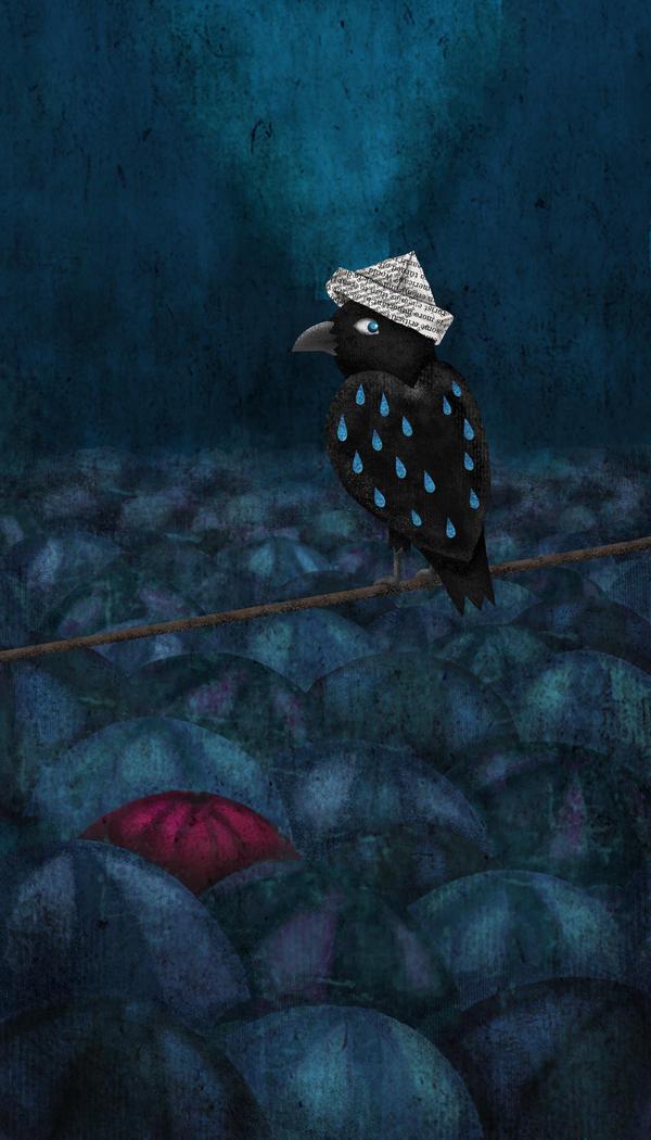 rainy raven by chuckometti