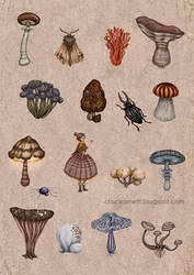 Shroomies by chuckometti