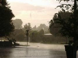 Rain Pix 2 by DeaconPenguin