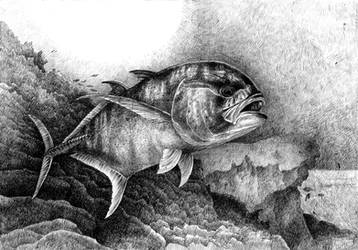 Fish by Dominczak