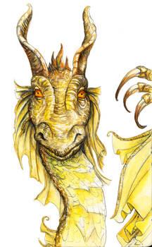 Red eyed bronze dragon
