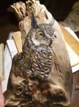 Owl on wood