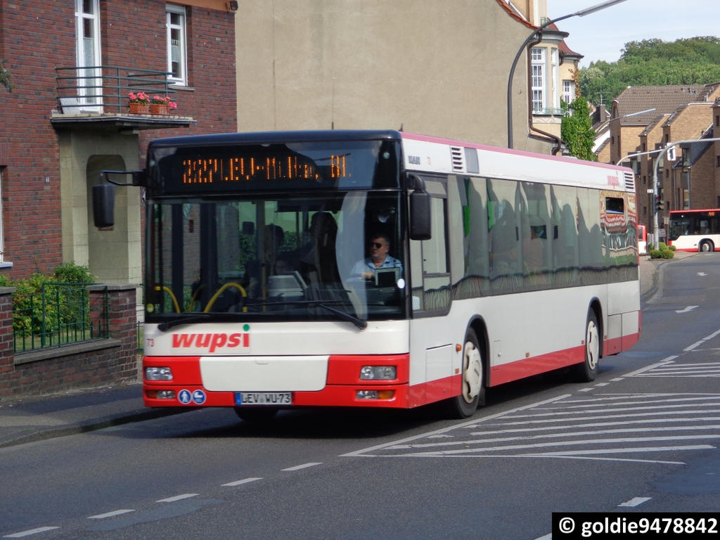 LEV-WU 73 (1) by goldie9478842