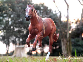 Run On by BamaBelle2012