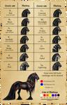 Farrosian Horse Genetics - Markings
