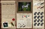 Elven Forest Lancer - Breed sheet by Efirende