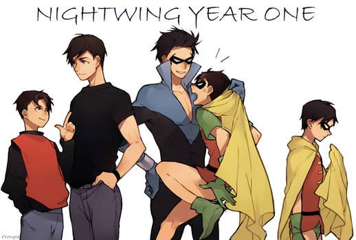 nightwing year one
