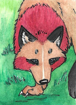 ACEO Card _ Anethra