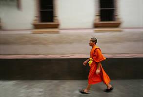 The Young Buddhist Monk by serhatdemiroglu