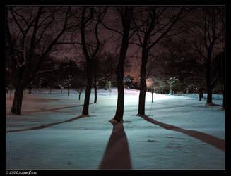 Winter Shadows v1 by adras