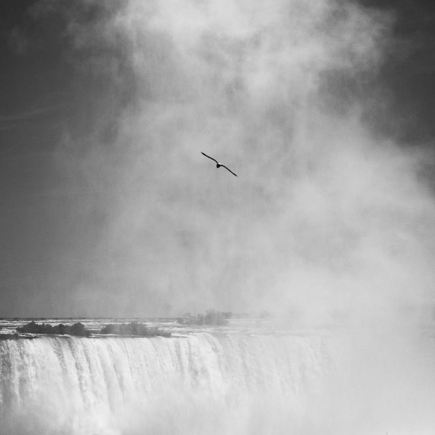 Playing With the Falls II by dybern