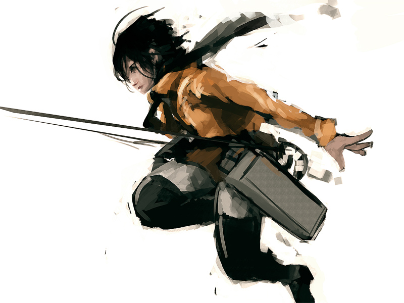Mikasa by WesleyChen