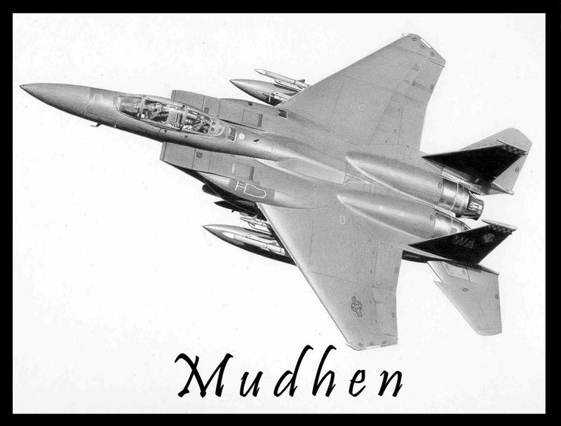 F-15E Wedding 2 by Raptorguy