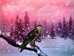 Winter's Wonderland