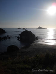 West Coast by lmelton2003