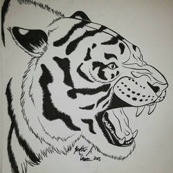 Ink Tiger by HDevers