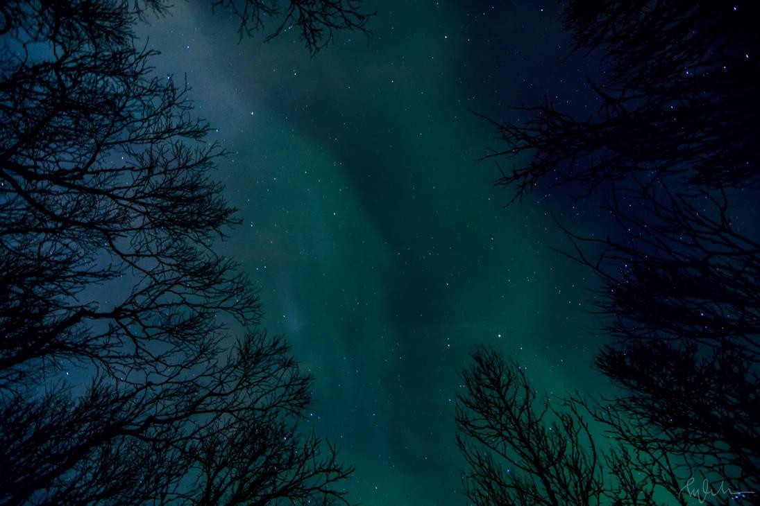 Aurora by Elenihrivesse