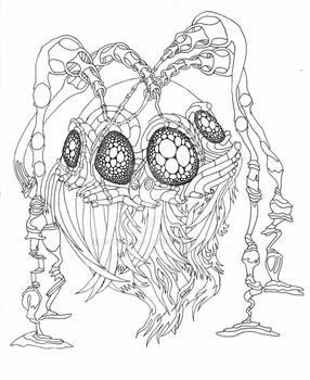 Bearded spider
