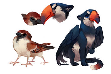 Sparrow and Toucan