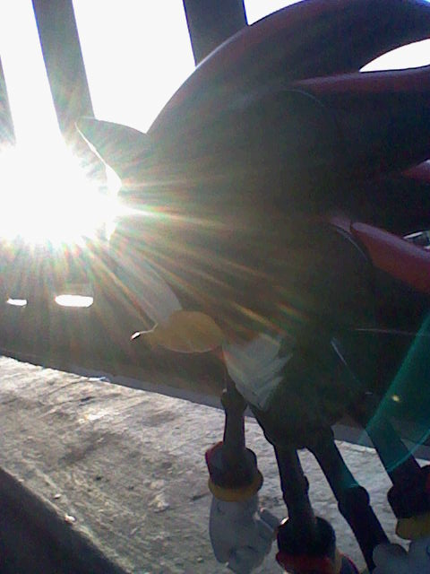 -:+:- Shadow In A Sunset -:+:- by graychanthevamphog13
