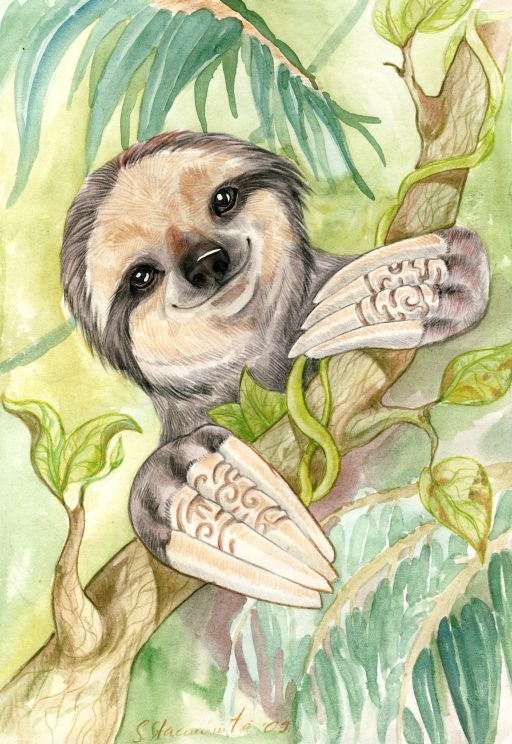 Sloth by DrunkenUnicorn