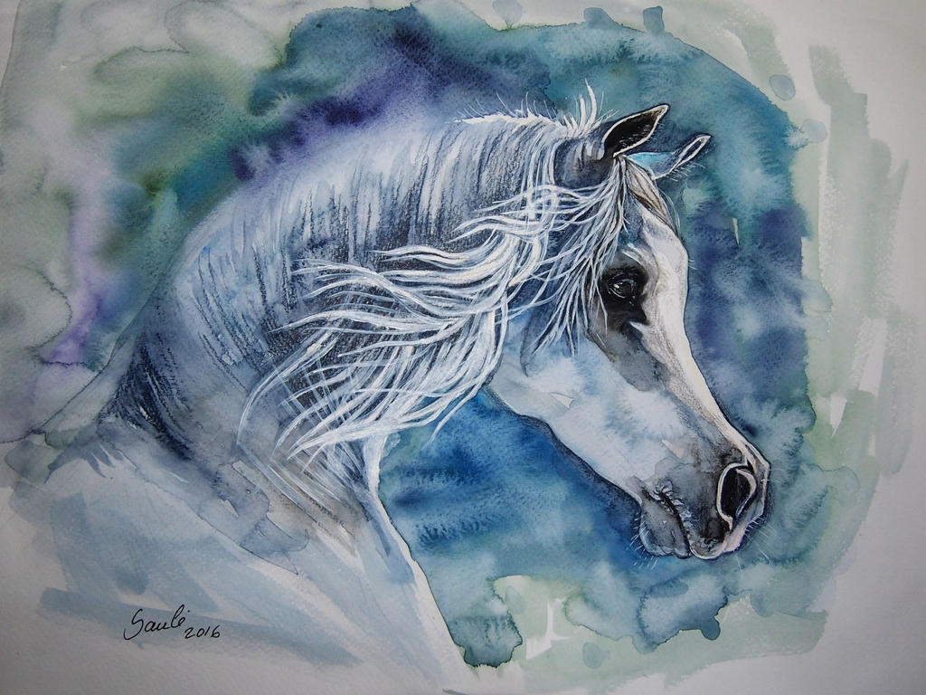 Grey Arabian horse by DrunkenUnicorn