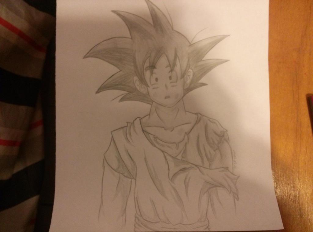 Goku tradicional by Pandi-Mar