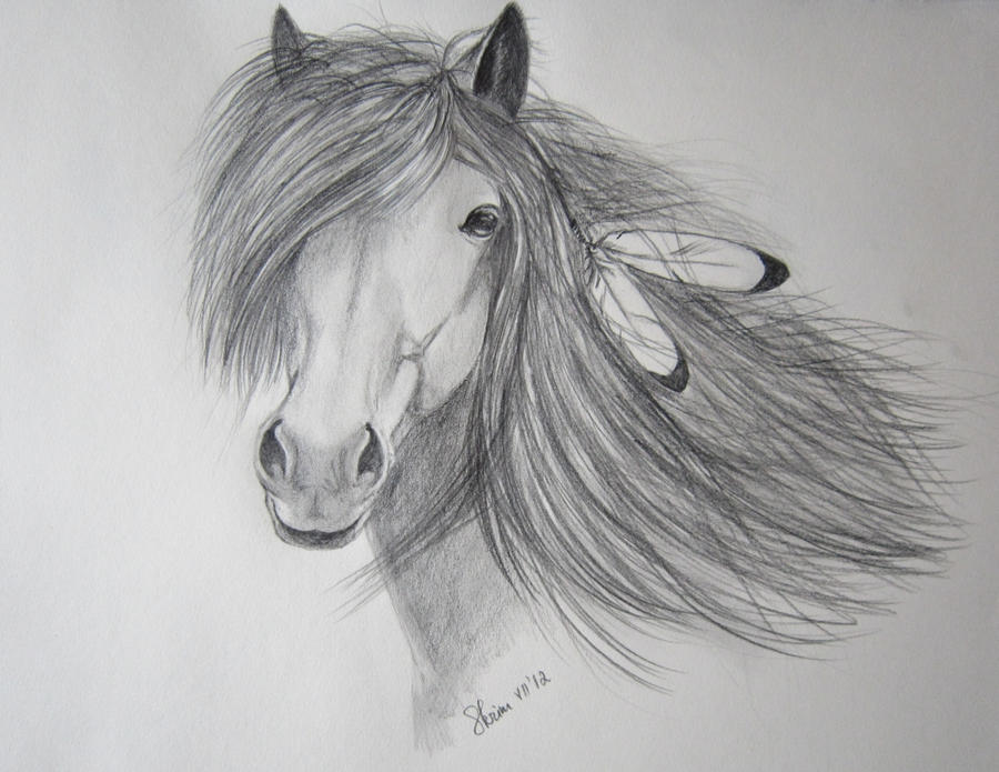 Native American Horse Drawings Indian horse painting cake ideas and designs
