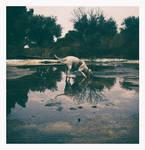 Rain Dogs 1