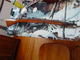 Steyr M95 by Sevvy89