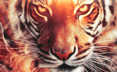 Tiger by LL-Lopez